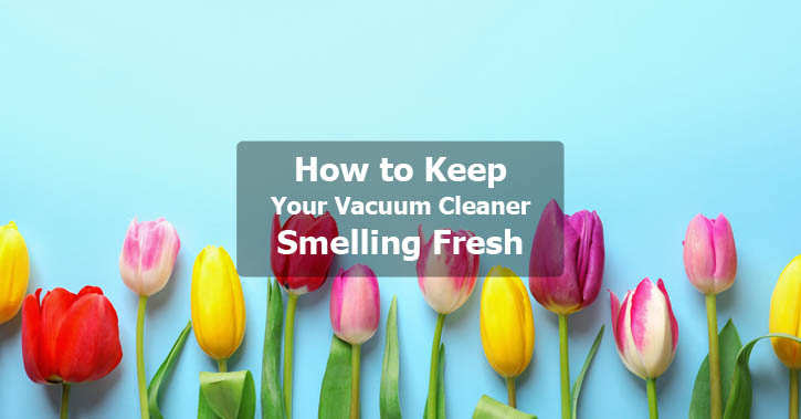 How To Keep Your Vacuum Cleaner Smelling Fresh