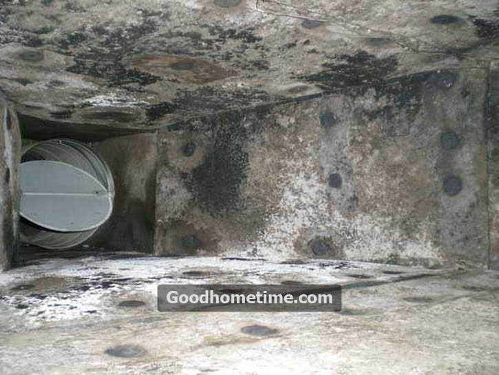 Mold might show its presence in the form of a musty odor or you might be able to see it around the vents.
